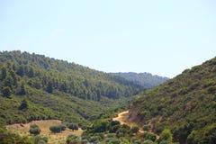 Straße in den grünen Hügeln von Sithonia in Griechenland Lizenzfreies Stockbild