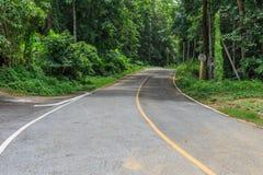 Straße in den grünen Wald Lizenzfreie Stockfotografie
