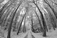 Straße in den Winter stockbild