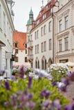 Straße der alten Stadt von Tallinn in Estland Stockfoto