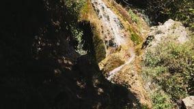 Straße in der Herbstwaldherbstlandschaft stock video