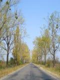Straße in der Landschaft Stockbild