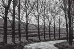 Straße in der Landschaft Lizenzfreies Stockfoto