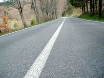Straße in der Natur Stockbilder
