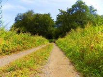 Straße in der Natur Lizenzfreie Stockfotografie