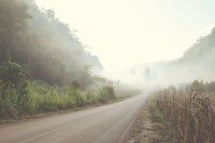 Straße in der Nebelwaldweinleseart Stockbild