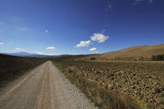 Straße in der toskanischen Landschaft Stockbild