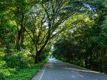 Straße in der tropischen Landschaft, Rainny-Jahreszeit in CAsia stockfotografie