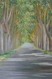 Straße in der Waldmalerei lizenzfreie stockbilder