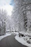 Straße in der Winterzeit Stockbild