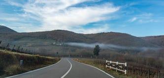 Straße des europäischen Landes , Biegen Verkehrsschild, Bäume und heller blauer Himmel nach rechts ab Asphalt und trockenes Gras Lizenzfreies Stockbild