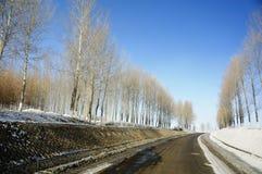 Straße des Nordostens Stockbild