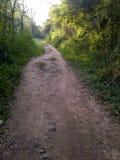 Straße des Sandes und des Steins mitten in dem Gebirgswald Lizenzfreie Stockfotos