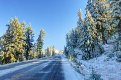 Straße des verschneiten Winters Stockfotografie