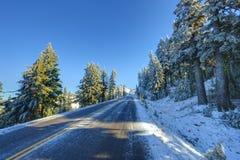 Straße des verschneiten Winters Lizenzfreie Stockfotografie