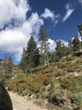 Straße in die Berge Stockfotografie