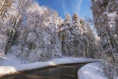 Straße, die in den Wald bedeckt mit weißem Schnee führt Lizenzfreie Stockbilder
