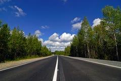 Straße, die durch den Wald überschreitet Lizenzfreies Stockfoto