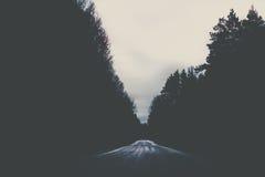 Straße, die durch einen dunklen Wald führt lizenzfreie stockfotografie
