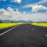 Straße, die gerade zum Berg und zu den gelben Blumen vorangeht Lizenzfreie Stockbilder