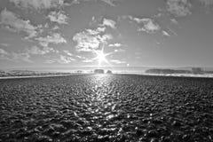 Straße in die Sonne stockbilder