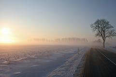 Straße in die Sonne lizenzfreie stockfotografie