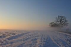 Straße in die Sonne stockfotografie