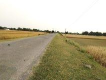 Straße, die zu meinem Dorf goning ist lizenzfreies stockbild