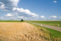 Straße durch Ackerlandhintergrund Stockfotos