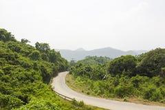 Straße durch die Berge mit Wald lizenzfreie stockfotografie