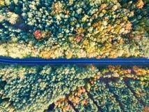 Straße durch bunten Herbstwald stockfotografie