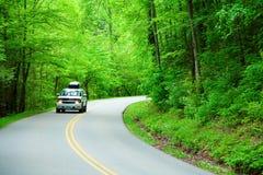 Straße durch das Holz Lizenzfreie Stockfotos