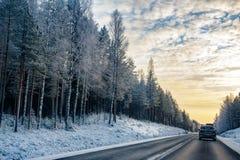 Straße durch den Wald Stockfotos