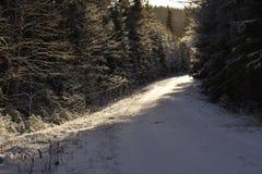 Straße durch den Wald mit Schnee und Eis Lizenzfreies Stockfoto