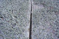 Straße durch den Winterwald Stockbilder
