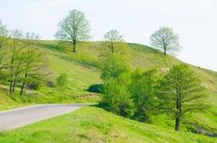 Straße durch die Hügel stockbild