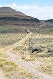 Straße durch die Wildnis Stockfoto