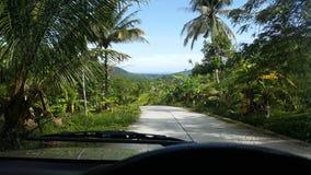 Straße durch Dschungel, Ansicht hinter Windschutzscheibe des Autos stockfoto