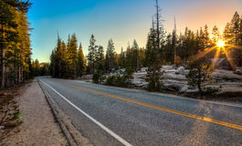 Straße durch Forest Sunset Lizenzfreie Stockbilder