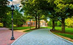 Straße durch John Hopkins University in Baltimore, Maryland lizenzfreie stockbilder