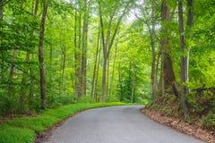 Straße durch Susquehanna Lizenzfreies Stockbild