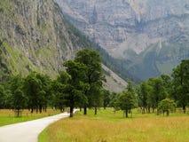 Straße durch szenisches Tal in der alpinen Landschaft Stockbild