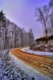 Straße durch Wald im Winter Lizenzfreies Stockfoto