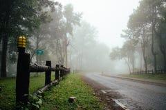 Straße durch Wald mit Nebel und nebelhaftes Lizenzfreie Stockfotos