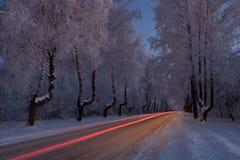 Straße durch Winterwald Stockfotos