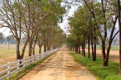 Straße in einem Bauernhof Stockfotos