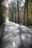 Straße in einem Herbstwaldhintergrund Stockfoto
