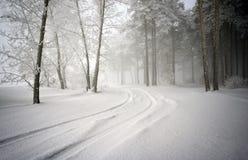 Straße in einem schneebedeckten Wald lizenzfreie stockbilder
