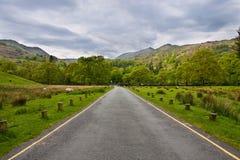 Straße in einer schönen Landschaft Lizenzfreie Stockbilder