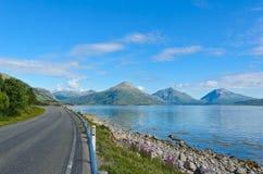 Straße entlang dem Tysfjorden in den Lofoten-Inseln lizenzfreies stockfoto